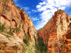 Explore Zion National Park with Bindlestiff Tours