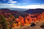 Bryce Canyon walking tours