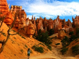 bryce and zion canyon tours