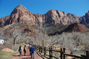 Walking Tours in Zion National Park