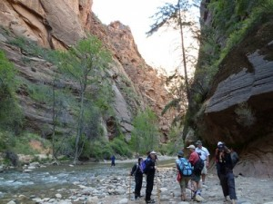 Hiking the Narrows Zion with Bindlestiff Tours