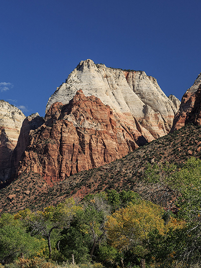 Zion National Park Tours