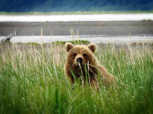 alaska1 - Alaska Kenai Adventure 9 Days