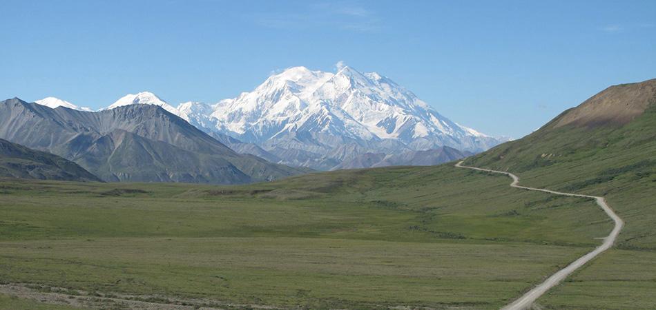 Alaska - Denali Landscape
