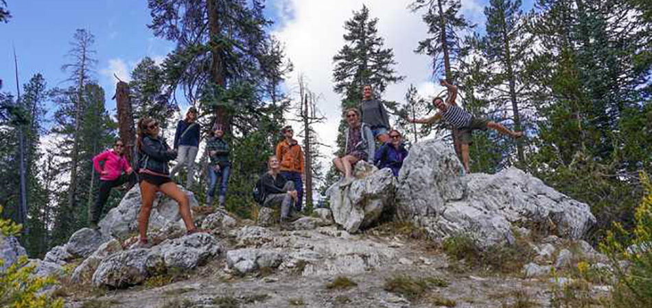 Yosemite - Hiking Tour Group
