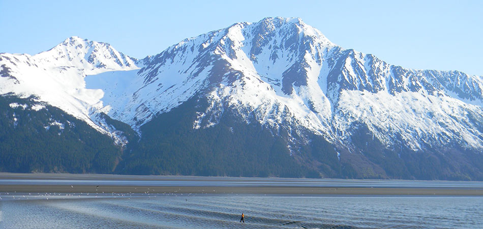 Turnagain Arm Snowy Mountain