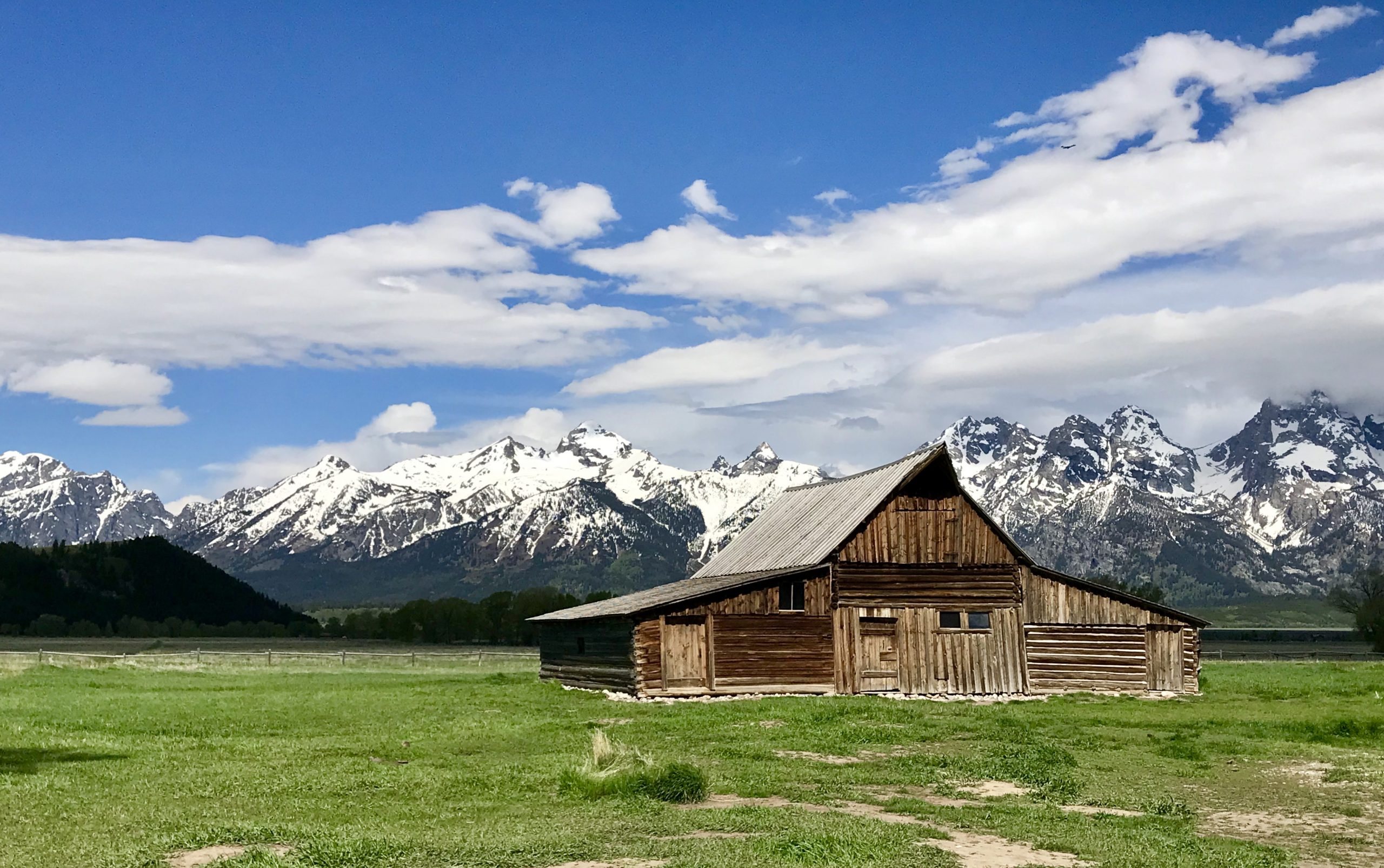 Yellowstone and Grand Tetons 4 Days